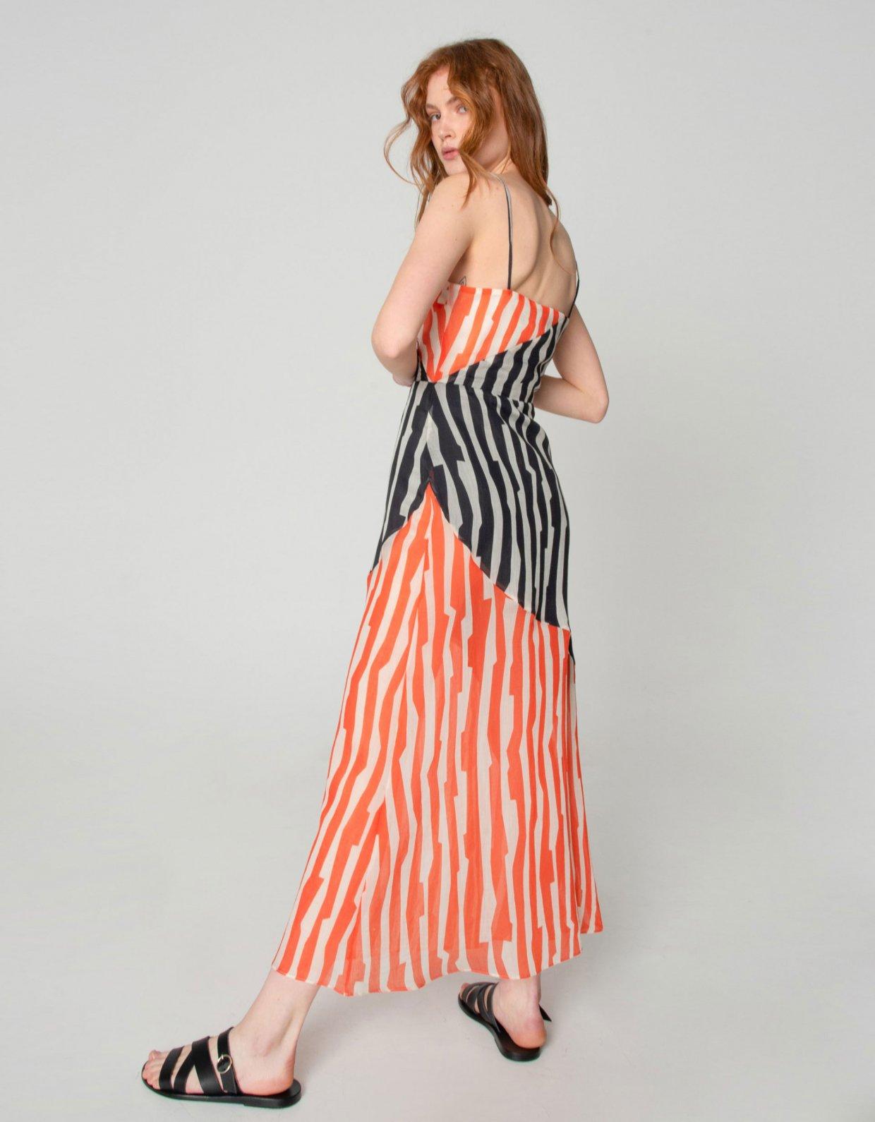 Nadia Rapti Zebras in city dress