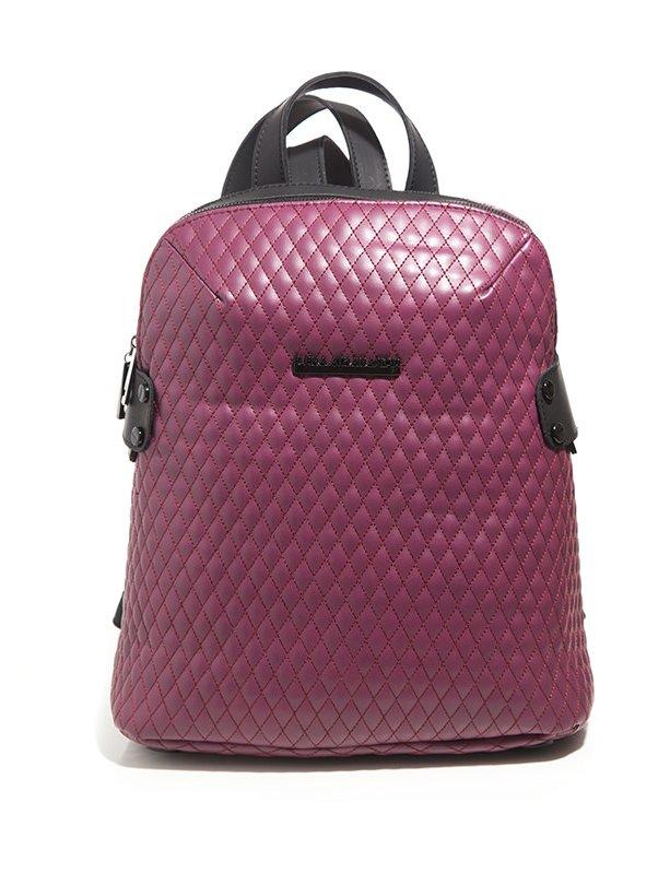 Biker raspberry backpack